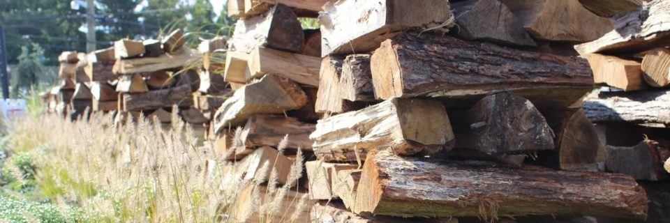 Get your firewood for winter from Seasons Nursery!